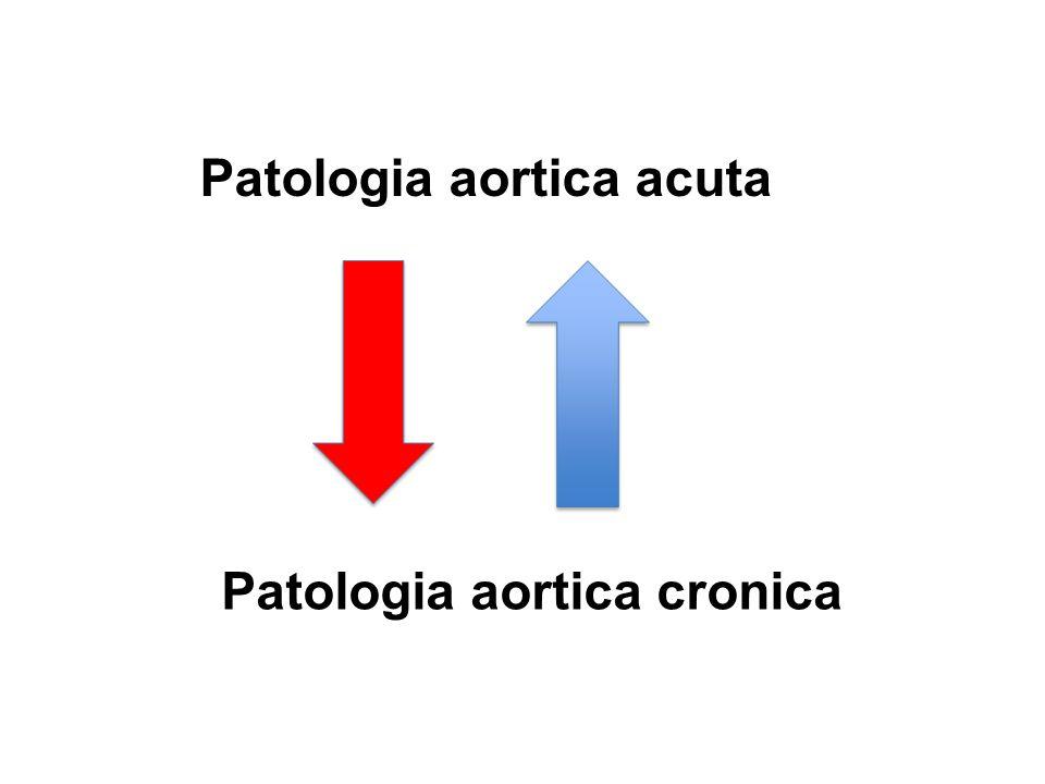 Patologia aortica acuta Patologia aortica cronica
