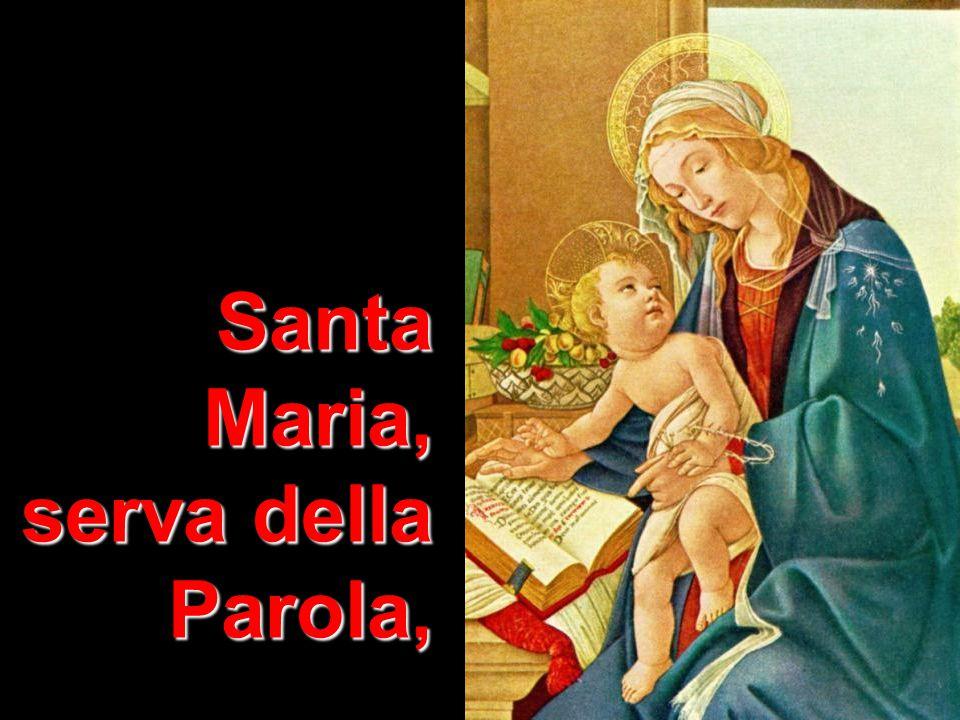 Matteo 3,1-12 Santa Maria, serva della Parola,