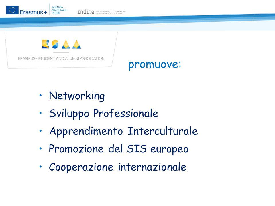 promuove: Networking Sviluppo Professionale Apprendimento Interculturale Promozione del SIS europeo Cooperazione internazionale