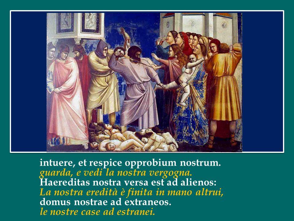 «O purezza delle Vergini, corifea dei beati, Madre dell'edificio incrollabile della Chiesa, Genitrice del Verbo immacolato di Dio,