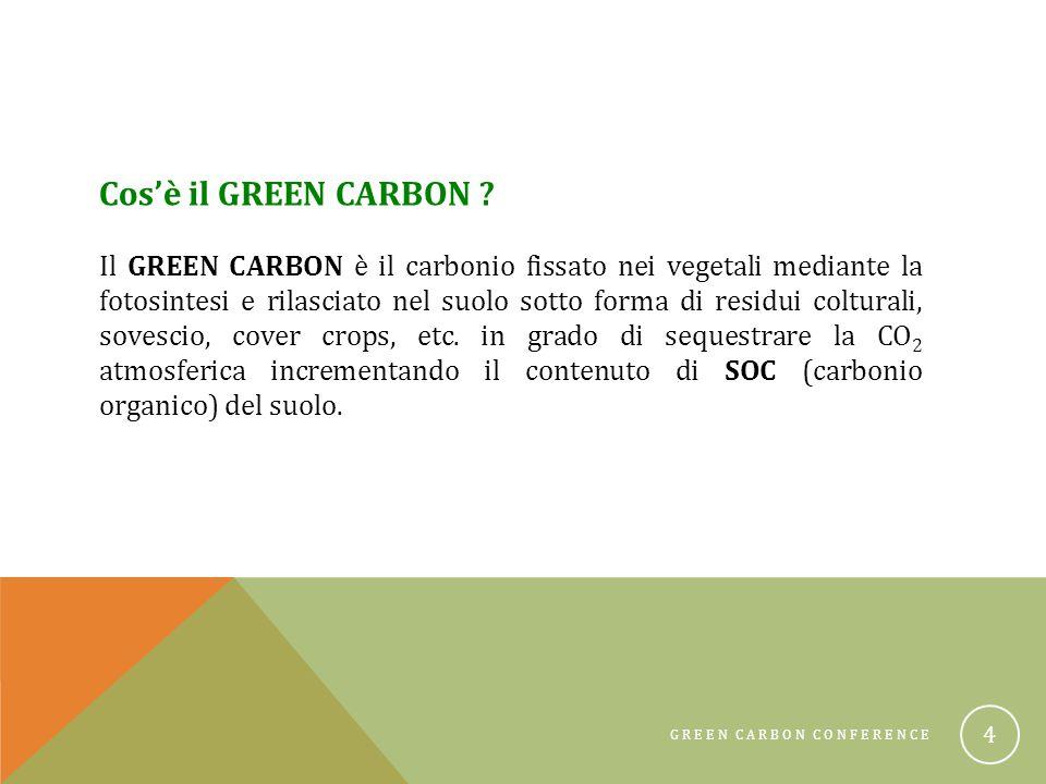 GREEN CARBON CONFERENCE 15 Buffer stripCover crops Stripp tillRidge till
