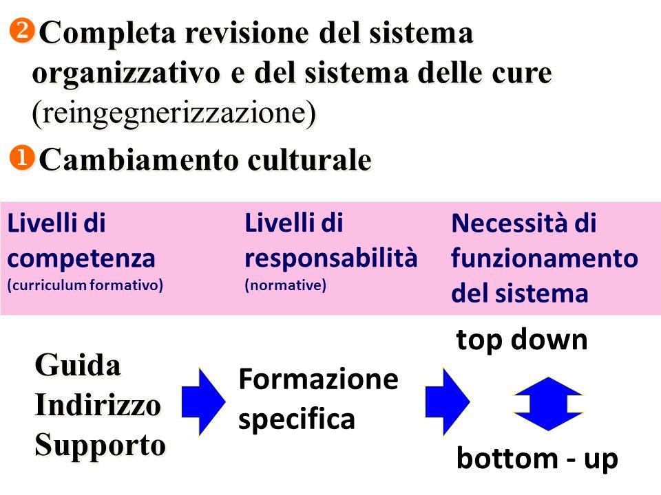  Completa revisione del sistema organizzativo e del sistema delle cure (reingegnerizzazione)  Cambiamento culturale  Completa revisione del sistema