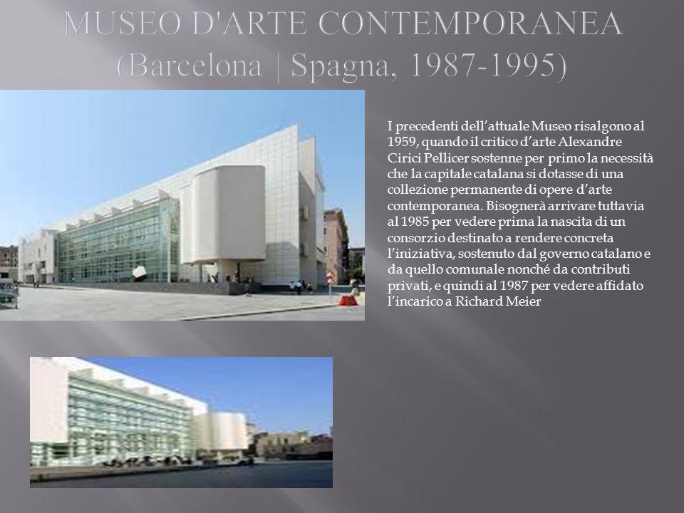 I precedenti dell'attuale Museo risalgono al 1959, quando il critico d'arte Alexandre Cirici Pellicer sostenne per primo la necessità che la capitale catalana si dotasse di una collezione permanente di opere d'arte contemporanea.