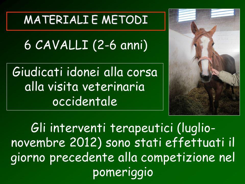 MATERIALI E METODI 6 CAVALLI (2-6 anni) Giudicati idonei alla corsa alla visita veterinaria occidentale Gli interventi terapeutici (luglio- novembre 2