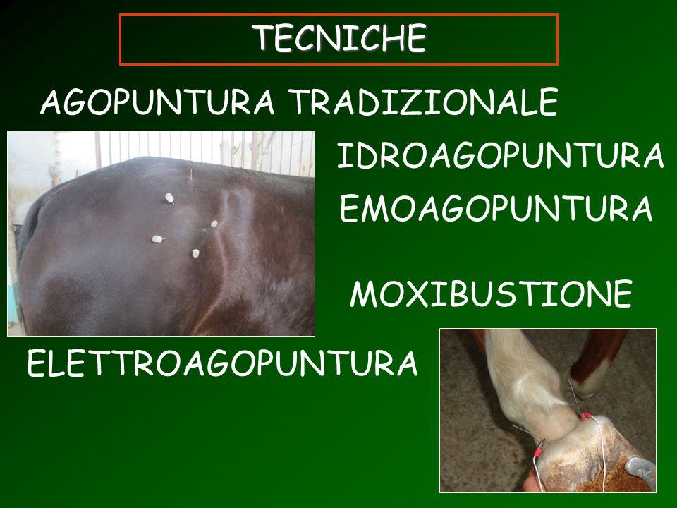 TECNICHE AGOPUNTURA TRADIZIONALE IDROAGOPUNTURA EMOAGOPUNTURA MOXIBUSTIONE ELETTROAGOPUNTURA