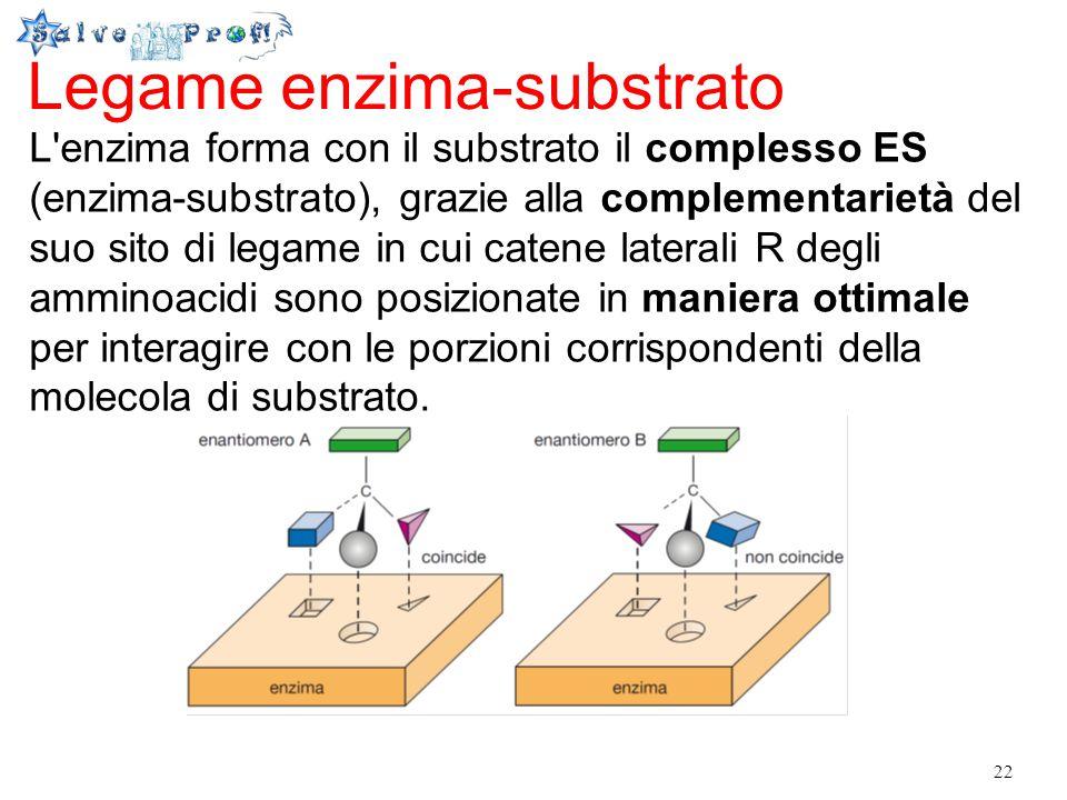22 Legame enzima-substrato L'enzima forma con il substrato il complesso ES (enzima-substrato), grazie alla complementarietà del suo sito di legame in