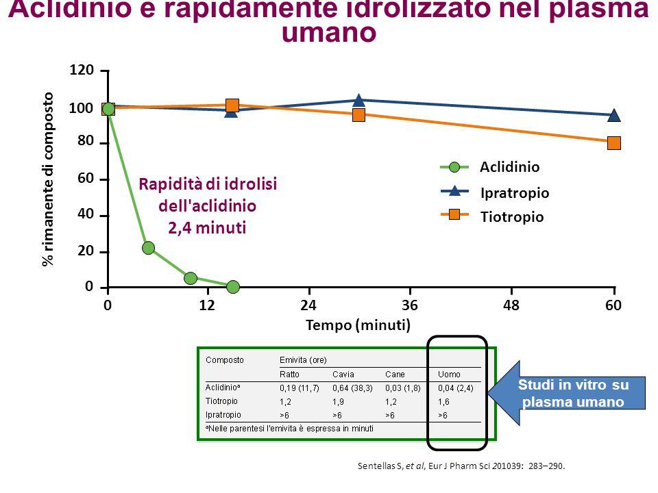 Aclidinio è rapidamente idrolizzato nel plasma umano 120 60483624 12 % rimanente di composto Tempo (minuti) 0 20 40 60 80 100 0 Aclidinio Ipratropio T