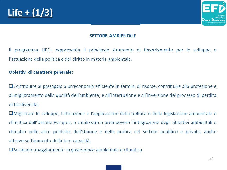 Life + (1/3) SETTORE AMBIENTALE Il programma LIFE+ rappresenta il principale strumento di finanziamento per lo sviluppo e l'attuazione della politica