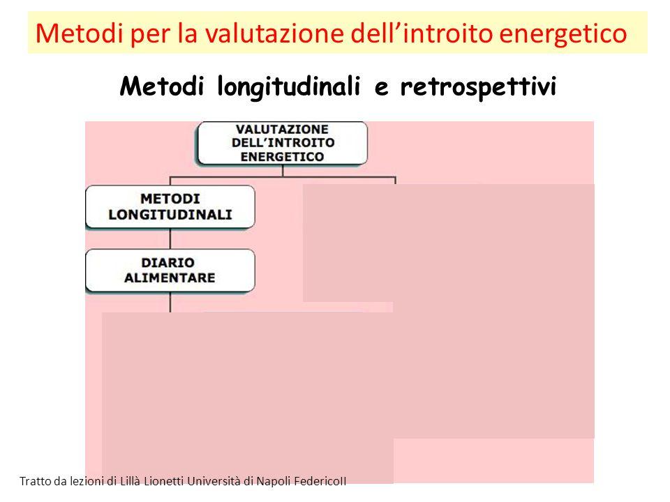 Metodi per la valutazione dell'introito energetico Metodi longitudinali e retrospettivi Tratto da lezioni di Lillà Lionetti Università di Napoli Feder