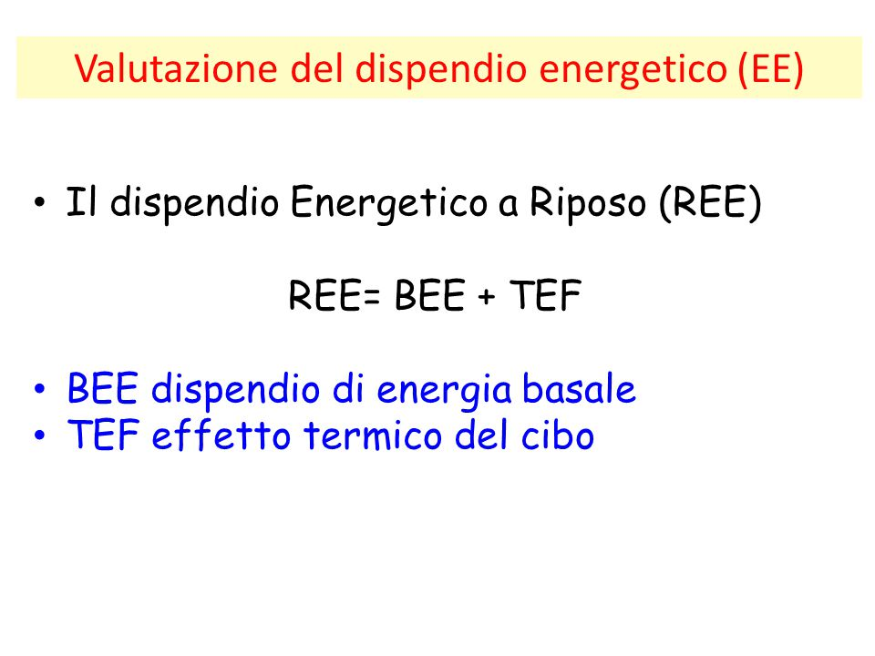 Valutazione del dispendio energetico (EE) Il dispendio Energetico a Riposo (REE) REE= BEE + TEF BEE dispendio di energia basale TEF effetto termico de