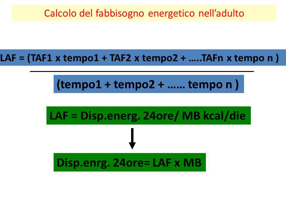 Calcolo del fabbisogno energetico nell'adulto LAF = (TAF1 x tempo1 + TAF2 x tempo2 + …..TAFn x tempo n ) (tempo1 + tempo2 + …… tempo n ) LAF = Disp.en