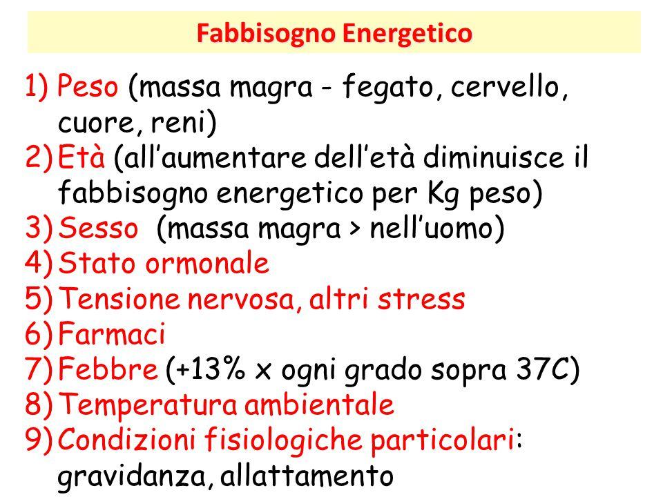 Fabbisogno Energetico 1)Peso (massa magra - fegato, cervello, cuore, reni) 2)Età (all'aumentare dell'età diminuisce il fabbisogno energetico per Kg pe