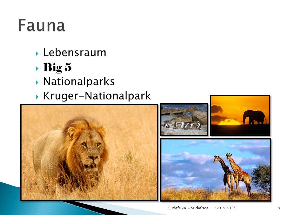  Lebensraum  Big 5  Nationalparks  Kruger-Nationalpark 22.05.2015 Südafrika - Sudafrica8