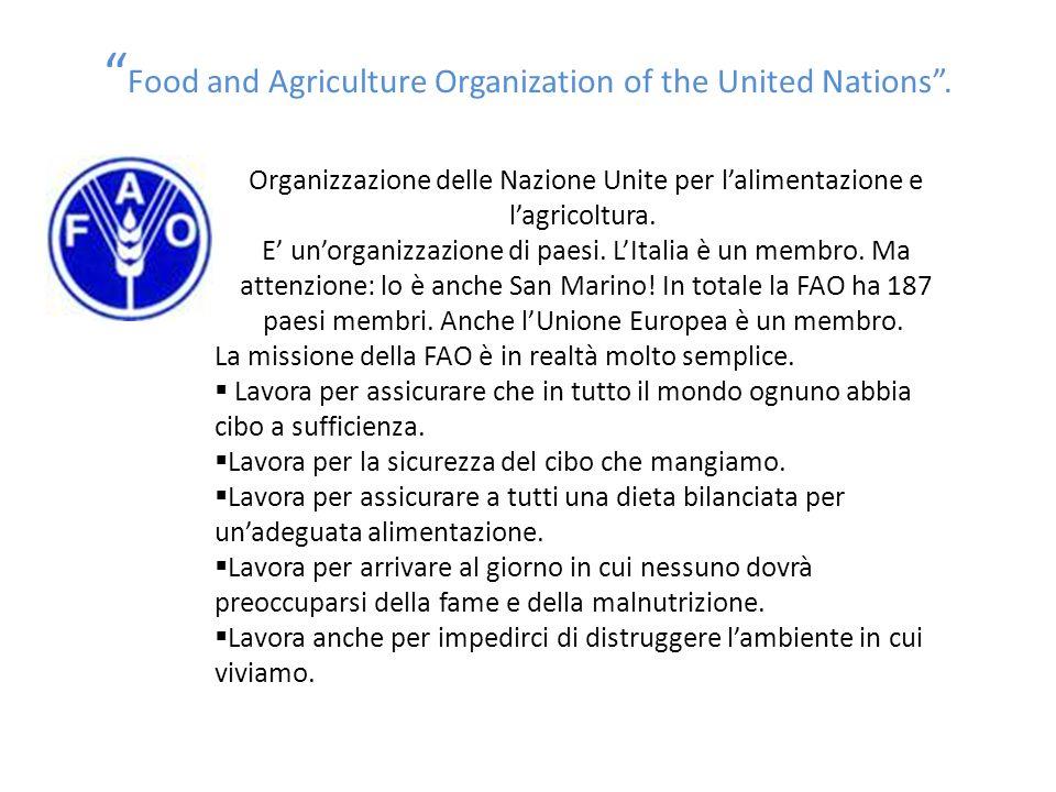 """"""" Food and Agriculture Organization of the United Nations"""". Organizzazione delle Nazione Unite per l'alimentazione e l'agricoltura. E' un'organizzazio"""