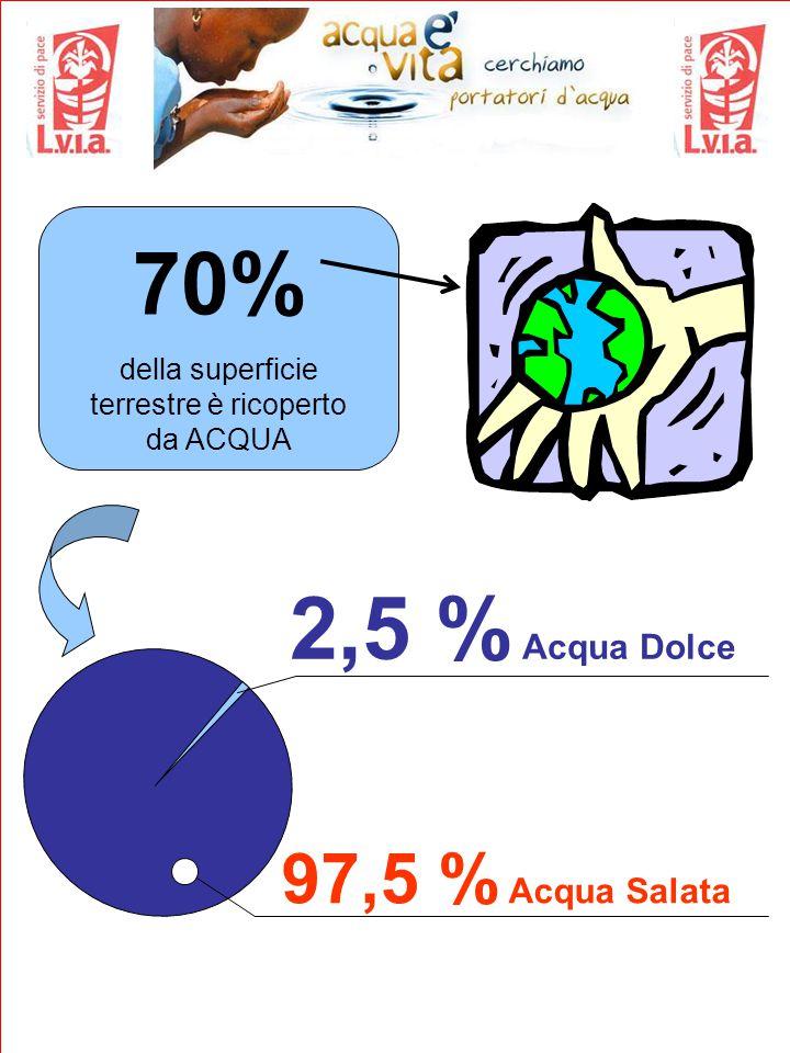70% della superficie terrestre è ricoperto da ACQUA 97,5 % Acqua Salata 2,5 % Acqua Dolce