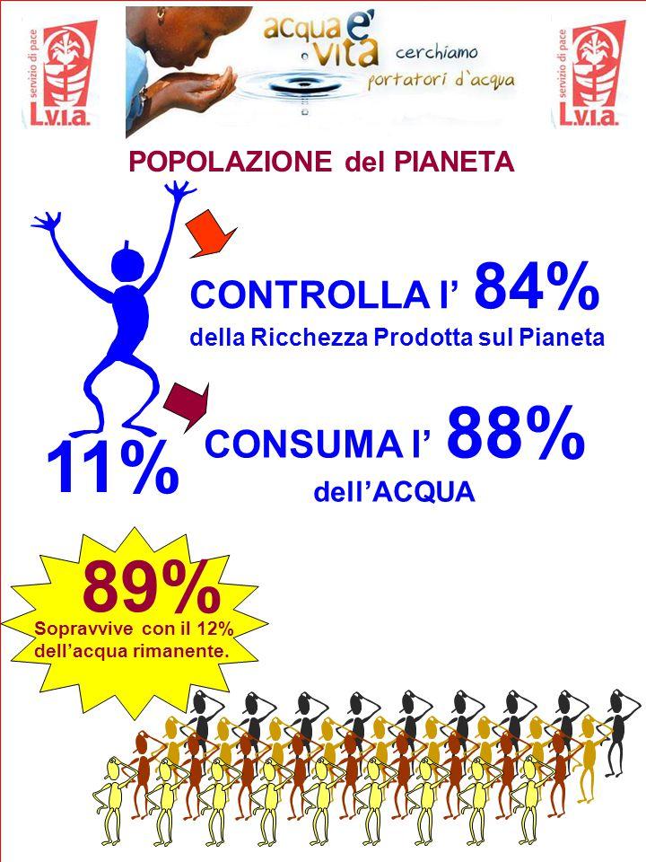 11% POPOLAZIONE del PIANETA CONTROLLA l' 84% della Ricchezza Prodotta sul Pianeta CONSUMA l' 88% dell'ACQUA Sopravvive con il 12% dell'acqua rimanente.