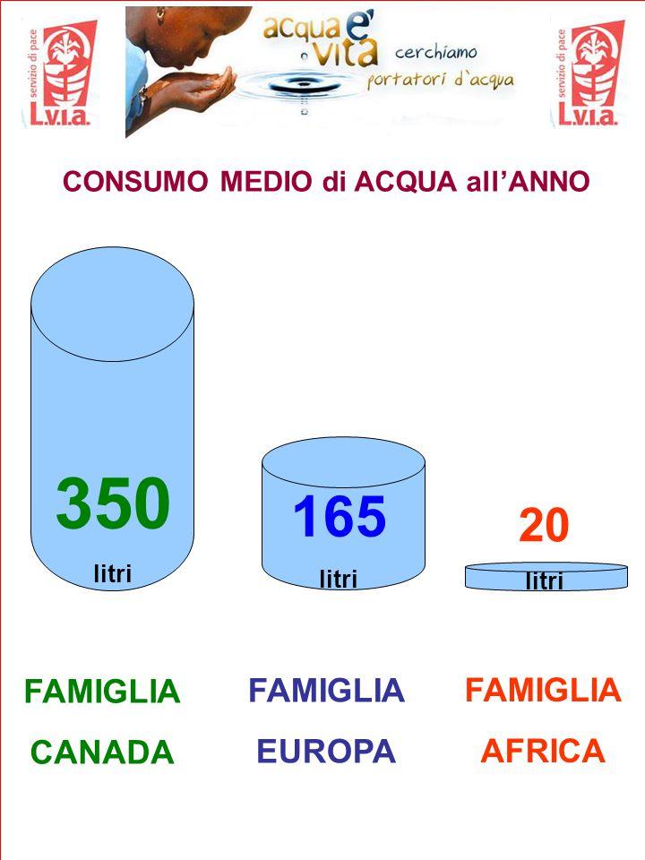 CONSUMO MEDIO di ACQUA all'ANNO FAMIGLIA CANADA 165 litri FAMIGLIA EUROPA FAMIGLIA AFRICA 350 litri 20 litri