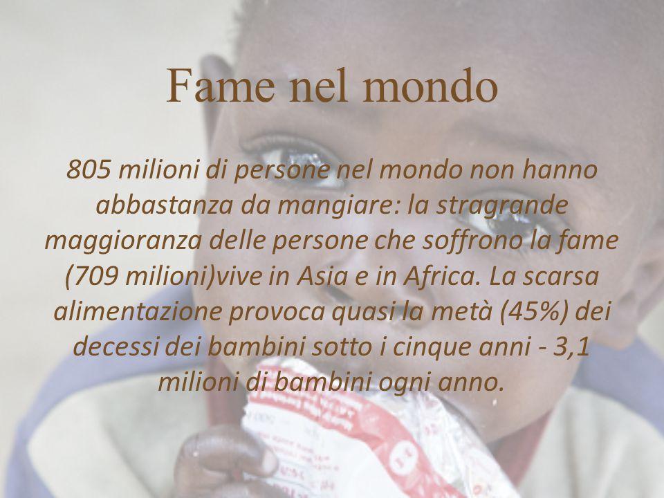 Fame nel mondo 805 milioni di persone nel mondo non hanno abbastanza da mangiare: la stragrande maggioranza delle persone che soffrono la fame (709 mi