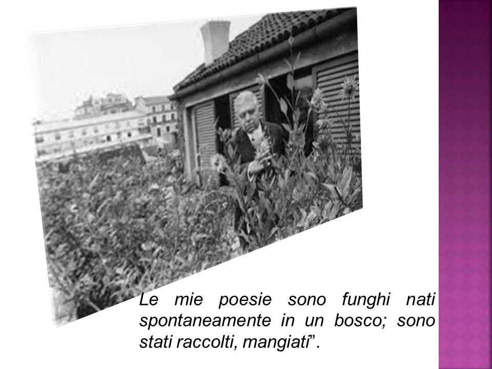 """Le mie poesie sono funghi nati spontaneamente in un bosco; sono stati raccolti, mangiati""""."""