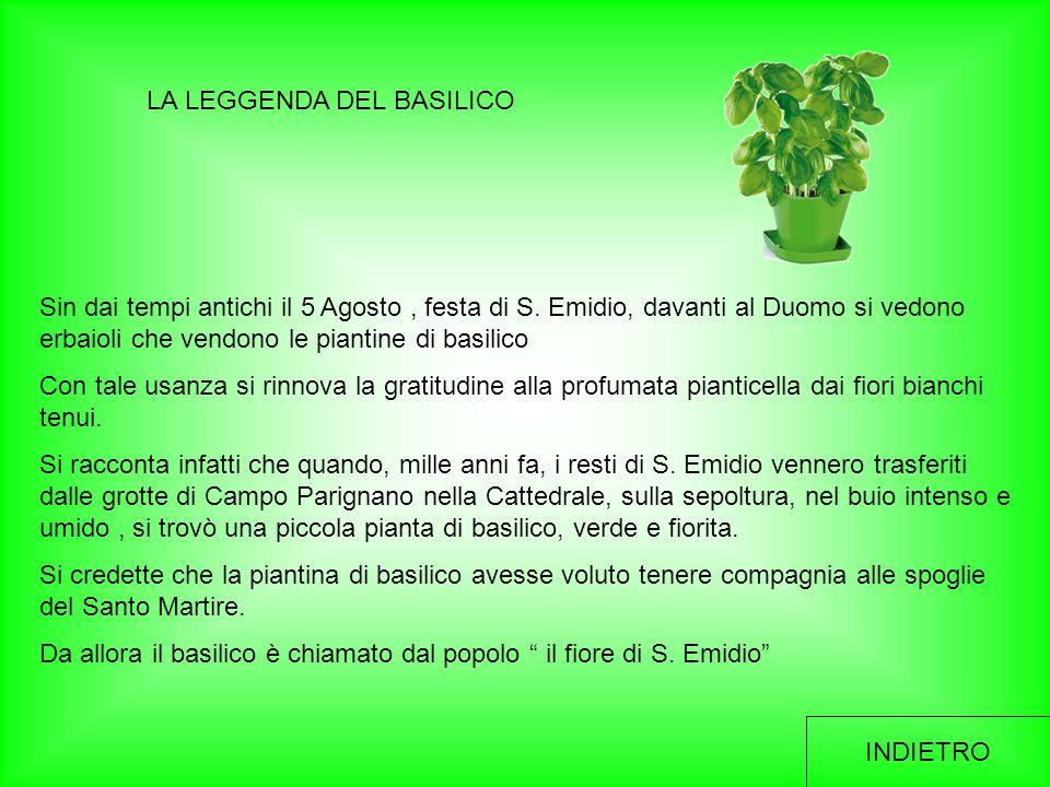 LA LEGGENDA DEL BASILICO Sin dai tempi antichi il 5 Agosto, festa di S. Emidio, davanti al Duomo si vedono erbaioli che vendono le piantine di basilic