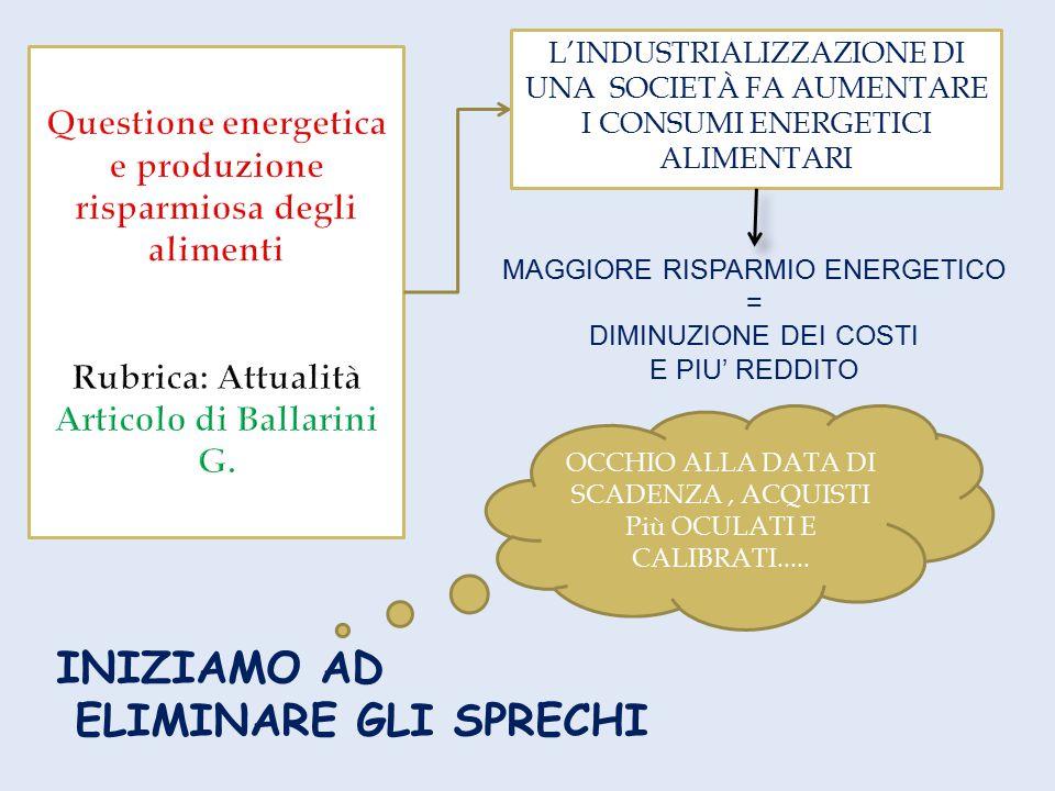 L'INDUSTRIALIZZAZIONE DI UNA SOCIETÀ FA AUMENTARE I CONSUMI ENERGETICI ALIMENTARI MAGGIORE RISPARMIO ENERGETICO = DIMINUZIONE DEI COSTI E PIU' REDDITO