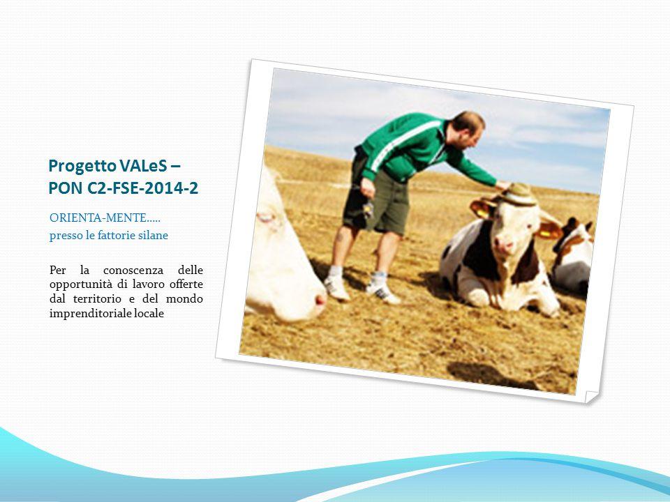 Progetto VALeS – PON C2-FSE-2014-2 ORIENTA-MENTE….. presso le fattorie silane Per la conoscenza delle opportunità di lavoro offerte dal territorio e d