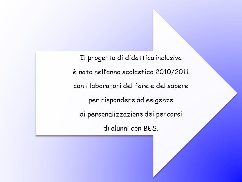 Il progetto di didattica inclusiva è nato nell'anno scolastico 2010/2011 con i laboratori del fare e del sapere per rispondere ad esigenze di personal