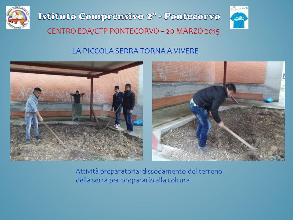 CENTRO EDA/CTP PONTECORVO – 20 MARZO 2015 Attività preparatoria: dissodamento del terreno della serra per prepararlo alla coltura LA PICCOLA SERRA TOR