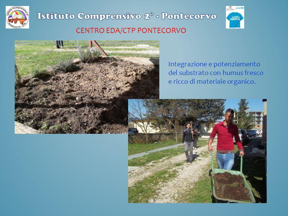 CENTRO EDA/CTP PONTECORVO Integrazione e potenziamento del substrato con humus fresco e ricco di materiale organico.