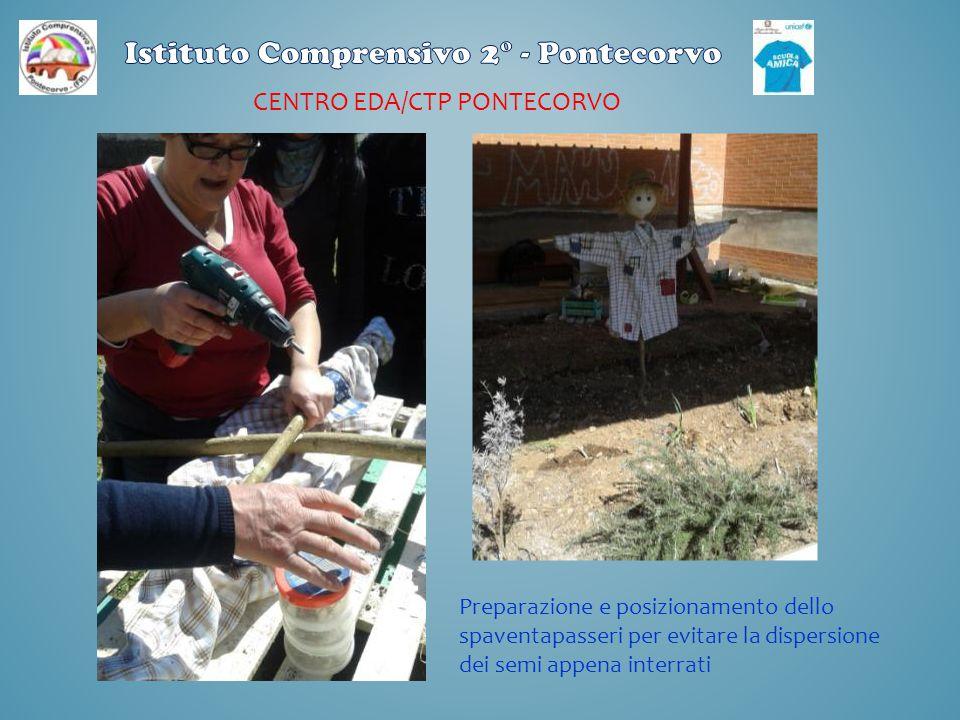 CENTRO EDA/CTP PONTECORVO Preparazione e posizionamento dello spaventapasseri per evitare la dispersione dei semi appena interrati