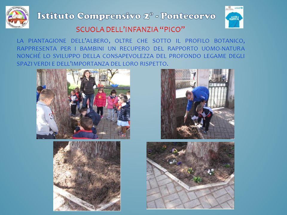 CENTRO EDA/CTP PONTECORVO Piccolo semenzaio fatto con cassette di legno e bottiglie di plastica.