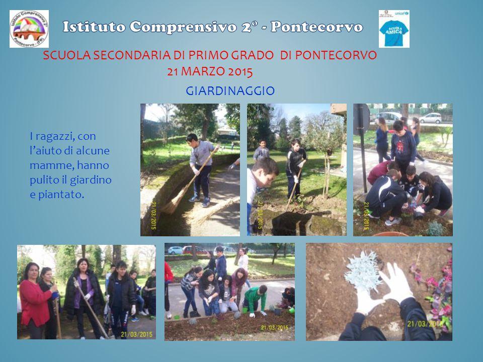 SCUOLA SECONDARIA DI PRIMO GRADO DI PONTECORVO 21 MARZO 2015 I ragazzi, con l'aiuto di alcune mamme, hanno pulito il giardino e piantato. GIARDINAGGIO