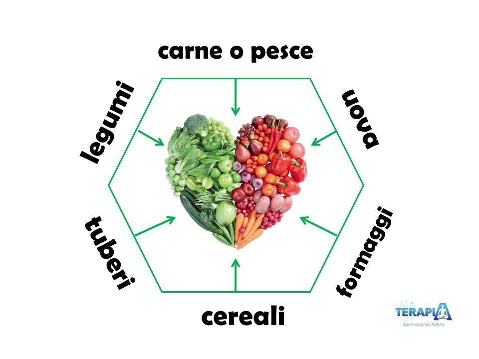 carne o pesce uova formaggi cereali tuberi legumi