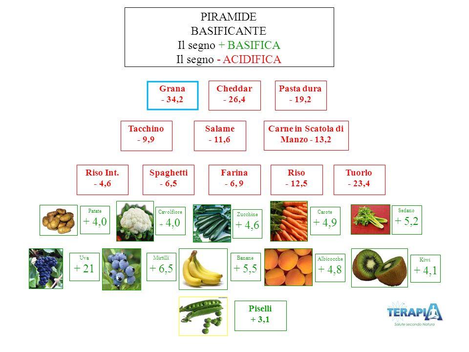 Cavolfiore + 4,0 Grana - 34,2 PIRAMIDE BASIFICANTE Il segno + BASIFICA Il segno - ACIDIFICA Zucchine + 4,6 Carote + 4,9 Sedano + 5,2 Carne in Scatola