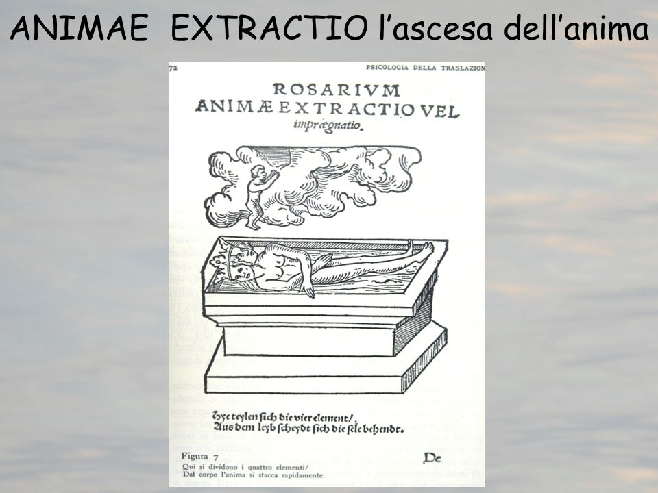 ANIMAE EXTRACTIO l'ascesa dell'anima