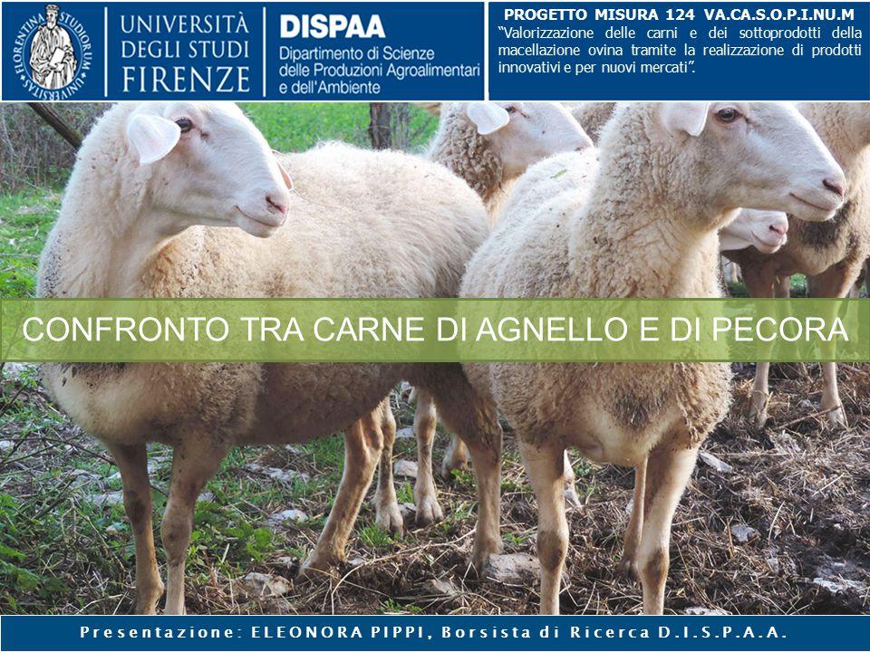 """CONFRONTO TRA CARNE DI AGNELLO E DI PECORA Presentazione: ELEONORA PIPPI, Borsista di Ricerca D.I.S.P.A.A. PROGETTO MISURA 124 VA.CA.S.O.P.I.NU.M """"Val"""