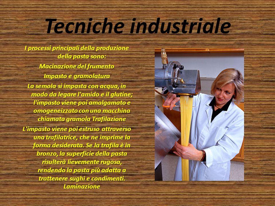 Tecniche industriale I processi principali della produzione della pasta sono: Macinazione del frumento Impasto e gramolatura La semola si impasta con
