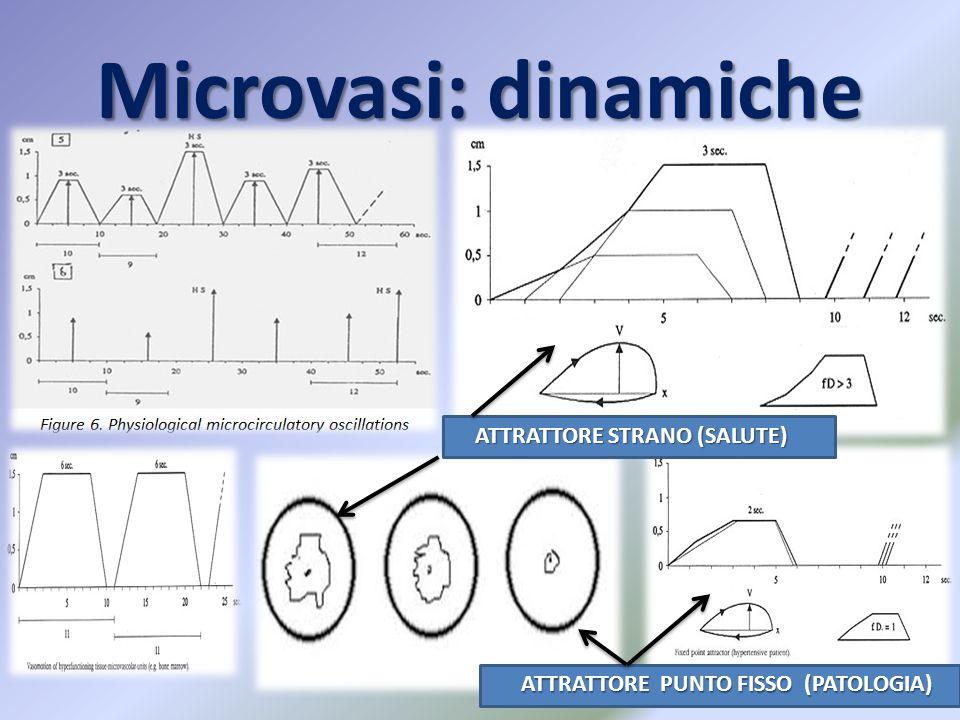 Microvasi: dinamiche ATTRATTORE STRANO (SALUTE) ATTRATTORE STRANO (SALUTE) ATTRATTORE PUNTO FISSO (PATOLOGIA) ATTRATTORE PUNTO FISSO (PATOLOGIA)