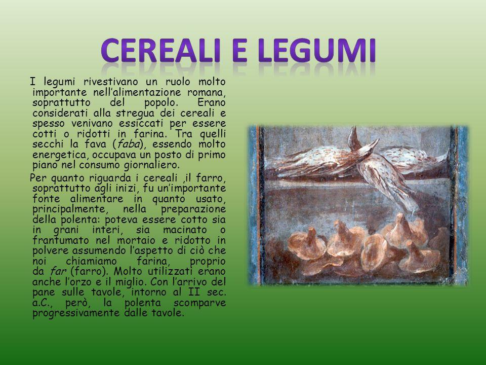 I legumi rivestivano un ruolo molto importante nell'alimentazione romana, soprattutto del popolo.