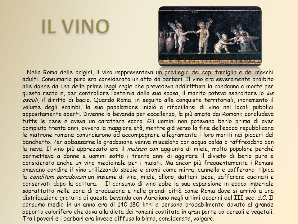 Nella Roma delle origini, il vino rappresentava un privilegio dei capi famiglia e dei maschi adulti.