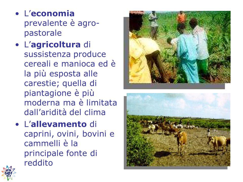 L'economia prevalente è agro- pastorale L'agricoltura di sussistenza produce cereali e manioca ed è la più esposta alle carestie; quella di piantagione è più moderna ma è limitata dall'aridità del clima L'allevamento di caprini, ovini, bovini e cammelli è la principale fonte di reddito