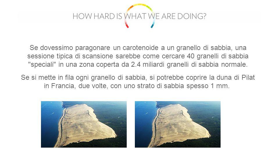 Se dovessimo paragonare un carotenoide a un granello di sabbia, una sessione tipica di scansione sarebbe come cercare 40 granelli di sabbia speciali in una zona coperta da 2.4 miliardi granelli di sabbia normale.