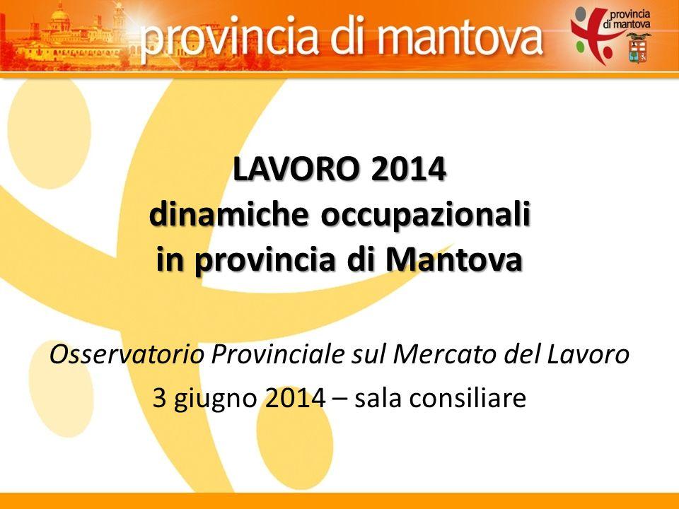 LAVORO 2014 dinamiche occupazionali in provincia di Mantova Osservatorio Provinciale sul Mercato del Lavoro 3 giugno 2014 – sala consiliare