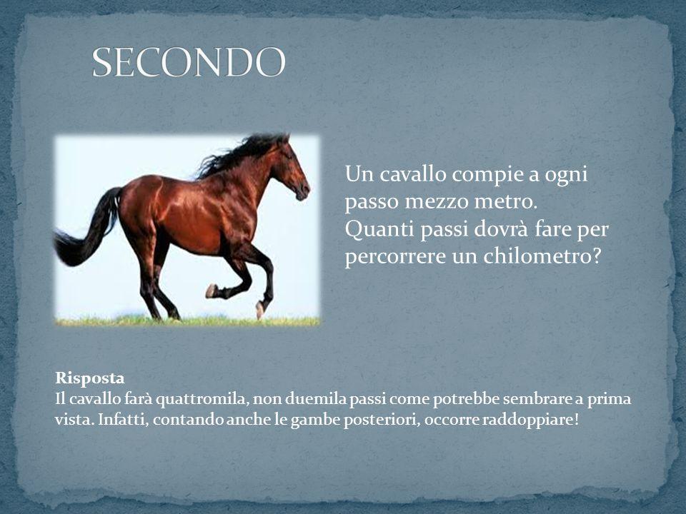 Un cavallo compie a ogni passo mezzo metro. Quanti passi dovrà fare per percorrere un chilometro? Risposta Il cavallo farà quattromila, non duemila pa