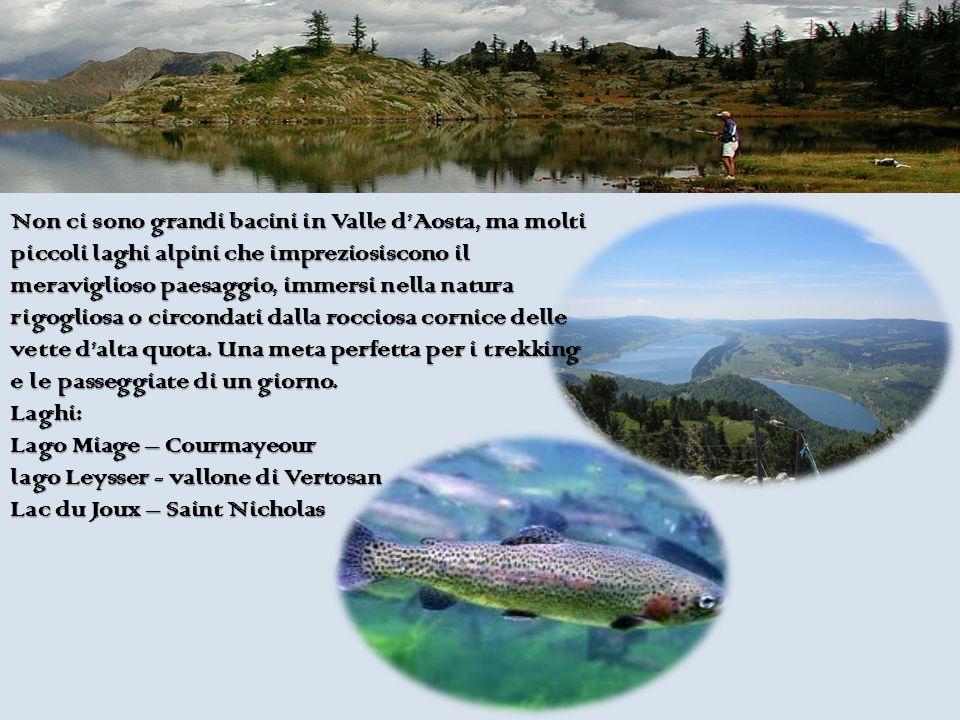 Non ci sono grandi bacini in Valle d'Aosta, ma molti piccoli laghi alpini che impreziosiscono il meraviglioso paesaggio, immersi nella natura rigogliosa o circondati dalla rocciosa cornice delle vette d'alta quota.