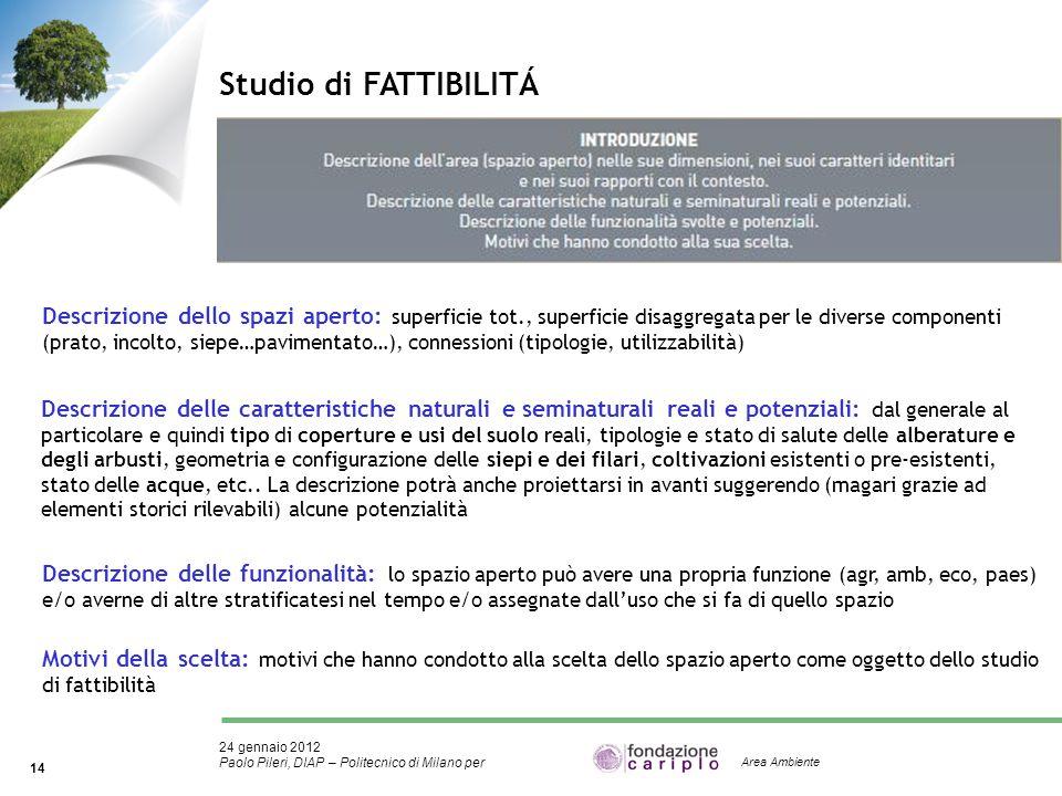 24 gennaio 2012 Paolo Pileri, DIAP – Politecnico di Milano per 14 Area Ambiente Studio di FATTIBILITÁ Descrizione dello spazi aperto: superficie tot.,