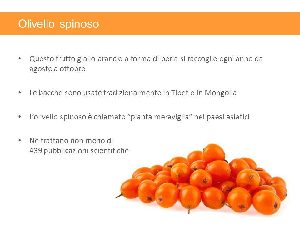 Olivello spinoso Questo frutto giallo-arancio a forma di perla si raccoglie ogni anno da agosto a ottobre Le bacche sono usate tradizionalmente in Tib