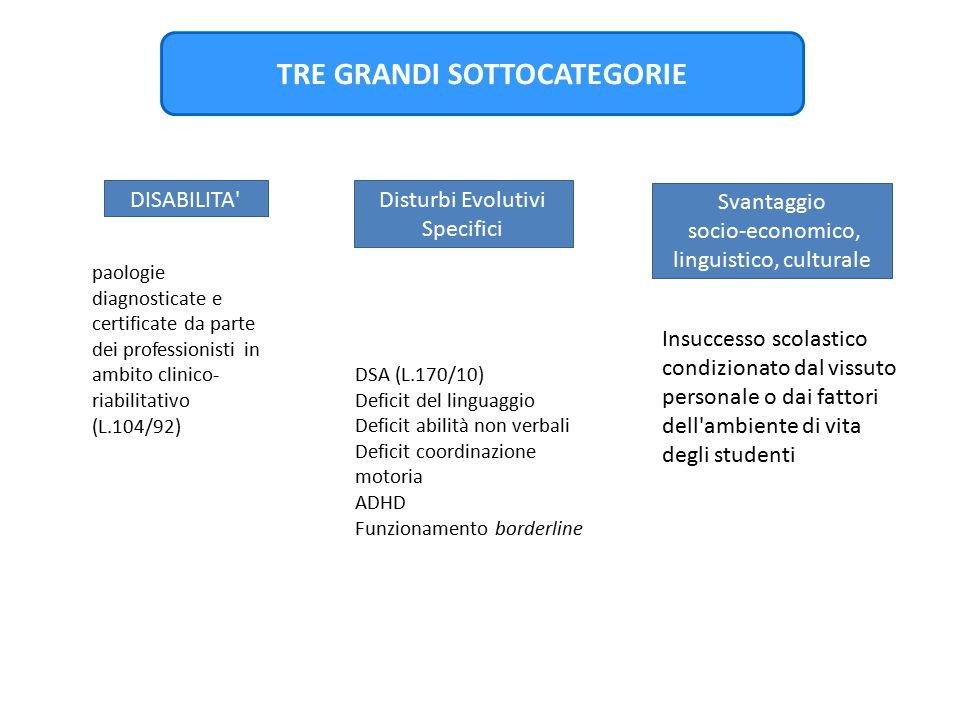 TRE GRANDI SOTTOCATEGORIE DISABILITA' Svantaggio socio-economico, linguistico, culturale Disturbi Evolutivi Specifici paologie diagnosticate e certifi