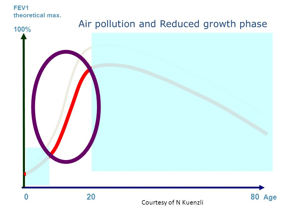 FEV1 theoretical max. 100% 0 20 80 Age Air pollution and Reduced growth phase Courtesy of N Kuenzli