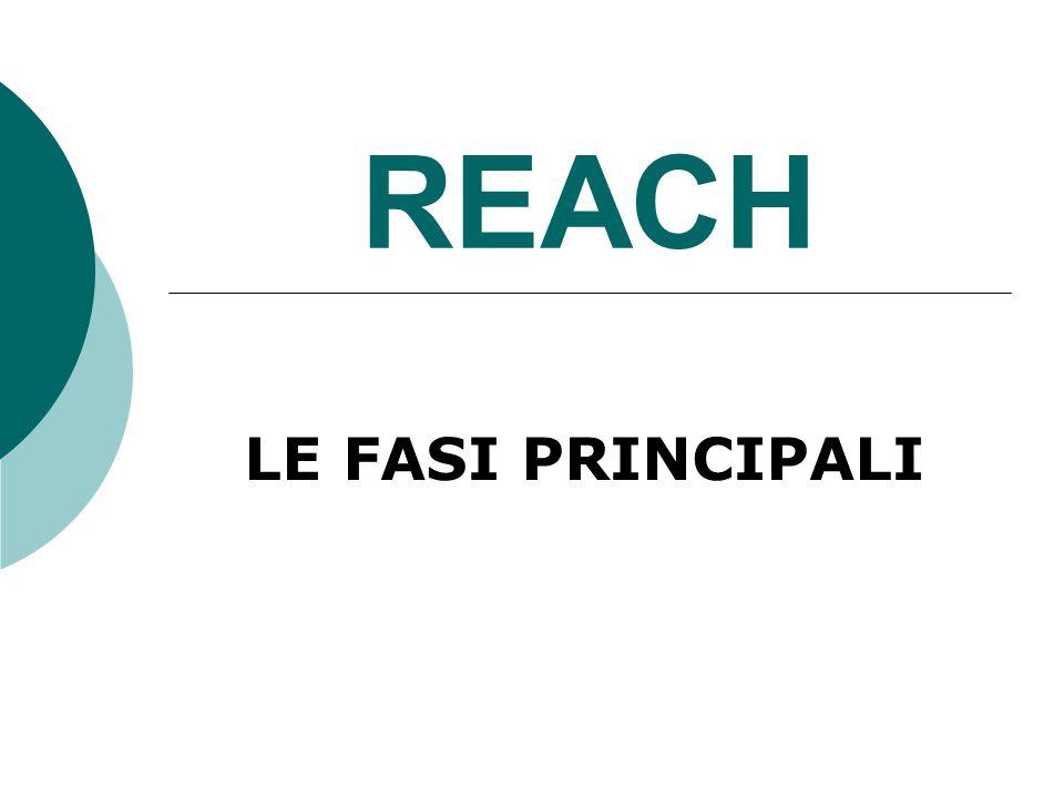 REACH LE FASI PRINCIPALI
